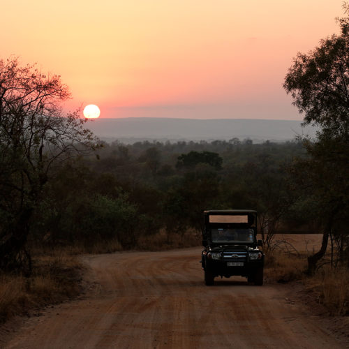Mabula Game Lodge sunrise safari