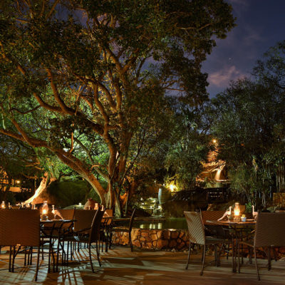 Enjoy your meal al fresco in tranquil surroundings of Mabula Game Lodge's Terrace