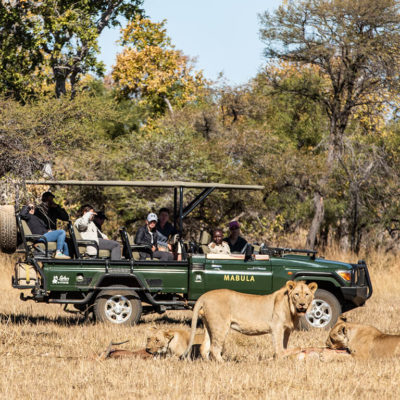 2019-mabula-safaris-48
